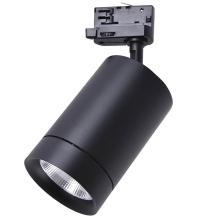 Трековый светодиодный светильник Lightstar Canno Led 303572