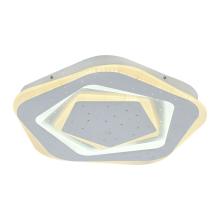 Потолочный светодиодный светильник F-Promo Ledolution 2281-5C