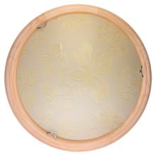 Настенно-потолочный светодиодный светильник Toplight Jane TL9640Y-00PN