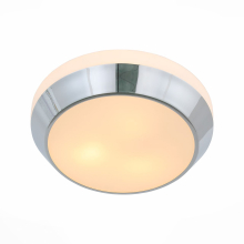 Потолочный светильник ST Luce Bagno SL469.502.02