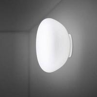 Настенно-потолочный светильник Fabbian Lumi F07 G45 01