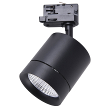 Трековый светодиодный светильник Lightstar Canno Led 301572