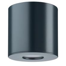 Уличный светодиодный светильник Paulmann House surface mounted Downlight 79671