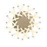 Потолочная светодиодная люстра ST Luce Filiali SL827.502.20