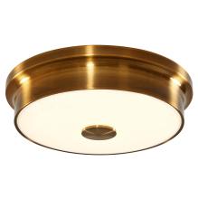 Потолочный светильник Citilux Фостер CL706222