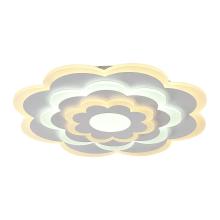 Потолочный светодиодный светильник F-Promo Ledolution 2286-5C