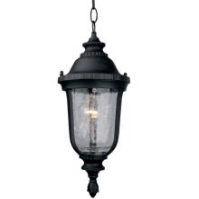 Подвесной светильник L'Arte Luce nampa L79801.12