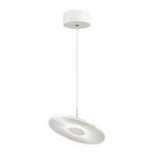 Подвесной светодиодный светильник Odeon Light Ellen 4107/12L