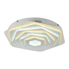 Потолочный светодиодный светильник F-Promo Ledolution 2289-5C