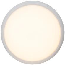 Потолочный светильник Brilliant Vigor G94141/05